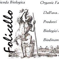 Folicello Società agricola s.s.