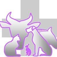 Groupe Vétérinaire Saint Georges