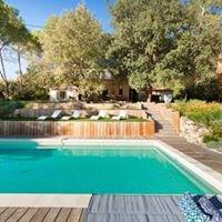 Un Mas en Provence Real Estate