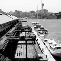 The Wharf Company | Jones Bay Wharf, Prymont