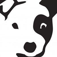 Doggie-olis