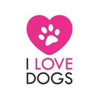 I Love Dogs.no