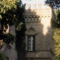 Villa Serena - progetto eventi
