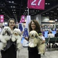 Abodes professional dog show handling