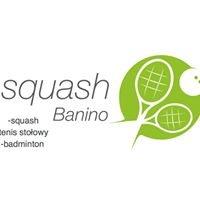 Squash Banino