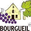 Vins de Bourgueil