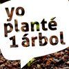 Fundación Yo Planté un Árbol