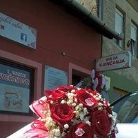 Cvjetni Salon Queen