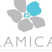 Lamica Salon