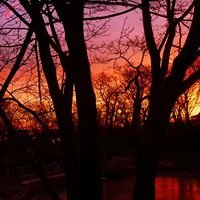 Millbrook Pond - Rockport, Massachusetts