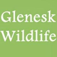 Glenesk Wildlife