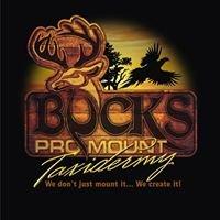 Buck's Pro Mount Taxidermy