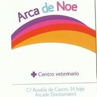 Arca de Noe Arcade