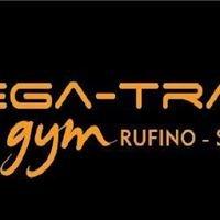 Mega-Training Gym