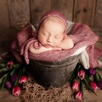 Hello Darling Photography - Cheshire Newborn and Baby Portraiture.