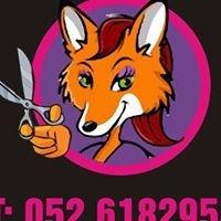 Foxy Locks Hair Boutique Clonmel
