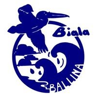 Biala Support Services Inc