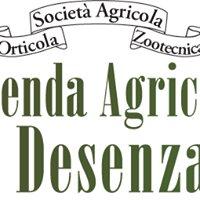 Azienda Agricola F.lli Desenzani