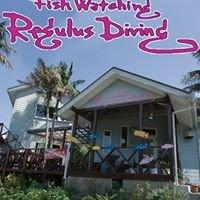 Regulus Diving