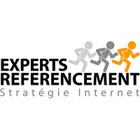 Experts Réferencement