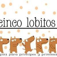 Cinco Lobitos