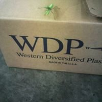 Western Diversified Plastic