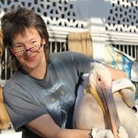 International Zoo Veterinary Group Avian and Reptile Clinic