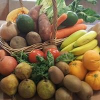 Seed Coastal Organics