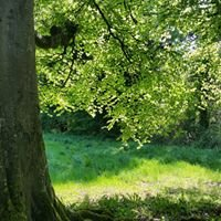 Donadea Forest & Park