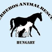 Cerberos Állatvédő Egyesület