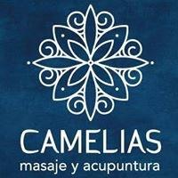 Camelias masaje y acupuntura