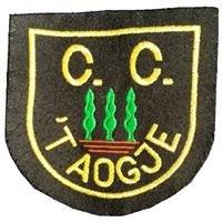 Stichting C.C. 't Aogje