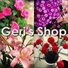 Geri's Shop