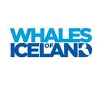 Whale Museum Reykjavik
