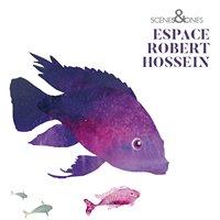 Espace Robert Hossein Grans - Scènes et Cinés