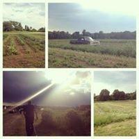 Chesterfield Harvest