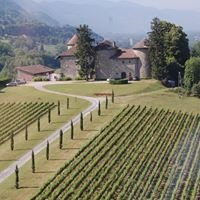 Les vins Chevalier Bayard
