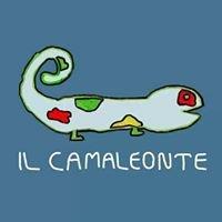 Il Camaleonte - negozio di scarpe per bambini
