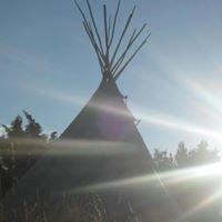 Woodland Tipi & Yurt Camping Holidays