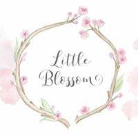 Little Blossom Flower Boutique