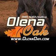 Olena Oak