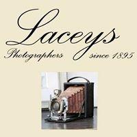 Laceys Studios