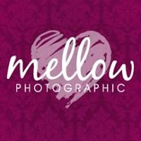 Mellow Photographic