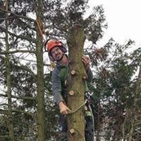 J Murtagh Tree Services