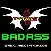 CAR-ACCS