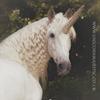 Unicorn Majestic Photography / Hire