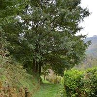 The Tuscan Pantry at Tineggiori Farm