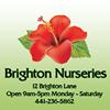 Brighton Nurseries