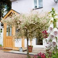 Rosebank Holiday Cottage - Forest of Dean
