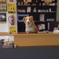 Delatite Veterinary Services